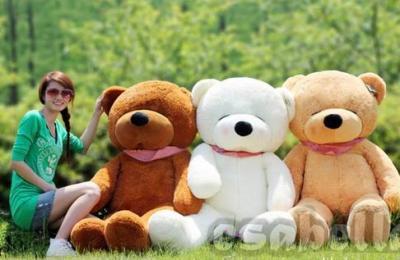 Gấu bông xịn hàng nhập đón giáng sinh giá rẻ
